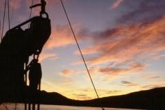 sunset_canna